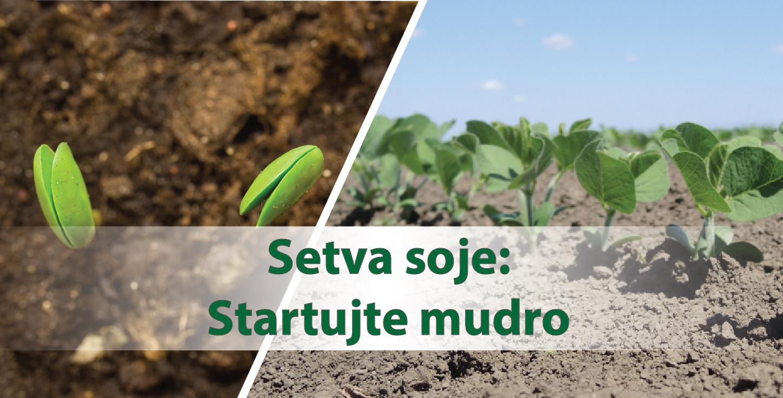 Setva soje: Zašto je važno tretirati seme pre setve?